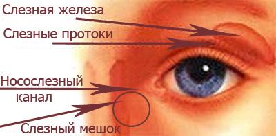 У ребенка гноятся глаза слезные пути