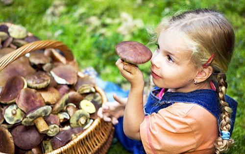 ребенку можно грибы