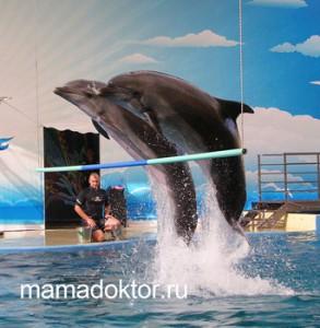 дельфинарий Анапа