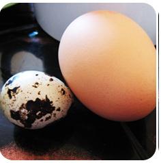 перепелиные и куриные яйца детям