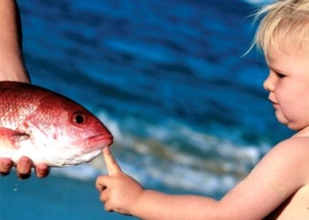 рыбу ребенку