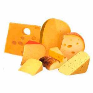 Сыр детям Когда и сколько можно ?