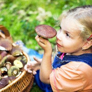 Когда ребенку можно грибы