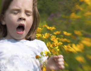 allergicheskii_rinit_u_rebenka