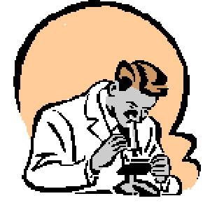 Соскоб на энтеробиоз Анализ кала на яйца глист